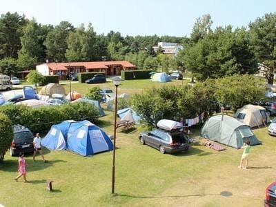 pole na campingu